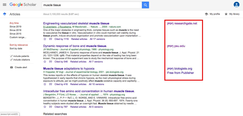 Google Scholarで無料論文を読む場合